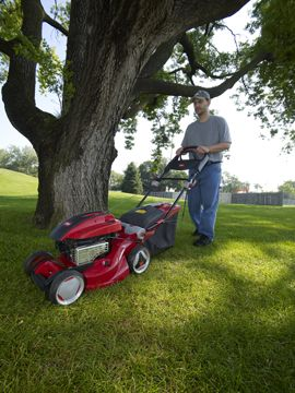 Order a The latest generation of Toro Recycler lawn mowers has been engineered to handle the tough grass conditions that overwork ordinary mulching mowers! The Toro 21026 3-in-1 Recycler Lawn Mower allows you to bag, discharge or mulch cuttings. It has a 17