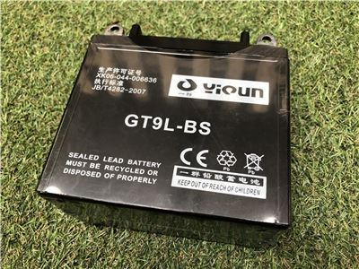 Battery for 15HP Chipper Electric Start (GT9L-BS)