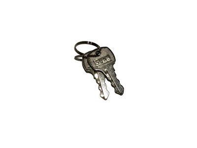 Ignition Keys (Pair) for 21