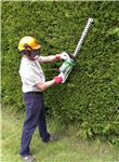 Lithium Ion Hedge Trimmer from Titan Pro