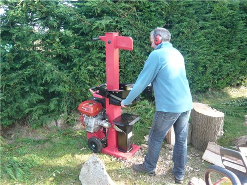 Titan 10 Ton vertical professional petrol driven log splitter