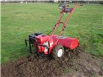 Cultivator for allotment TP700 Titan Pro